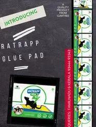 Ratrapp Glue Pad