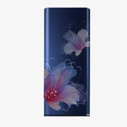 2 Star Blue and Red Floral 220 L Panasonic Refrigerator, Single Door, Model Name/Number: NR-AC20SA3X1