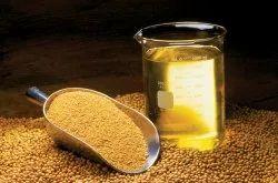 Oil Seed Testing