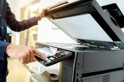 1 Year Bulk Photocopying Services