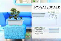BONSAI PLANTER SQUARE
