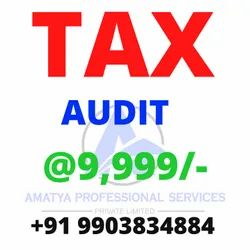 Private Limited Company 10 Days Tax Audit, Pan India