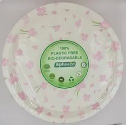 Biodegradable Paper Plate