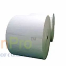 Biodegradable Coated Chromo Paper