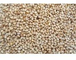 Natural White Sesame Seed, For Agriculture, Packaging Size: 25
