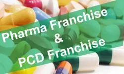 Azithromycin Antibiotic Medicine PCD Pharma