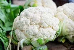 White Fresh Organic Cauliflower, Pesticide Free  (for Raw Products), Packaging: Plastic Bag or Polythene Bag