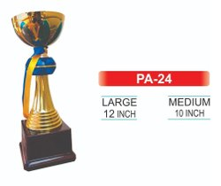 PA -24 Plastic Award