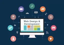 Dynamic Website Development Service, With Online Support