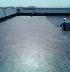 Roof Waterproofing Service, in Local