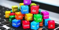 PHP/JavaScript Dynamic Web Domain Backordering Services, With 24*7 Support