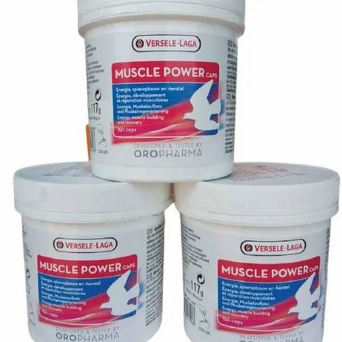 Versele Laga Muscle Power Cap Pigeon Supplement at Rs 2900/box   Pigeon  Feed   ID: 23124673548
