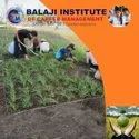 Bachelor Of Science In Agriculture, Pan India, September