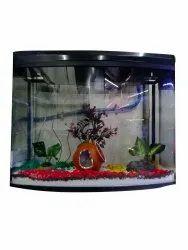 Pets Hub Transparent 2 Feet Glass Fish Aquarium