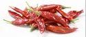 Red Chilli Teja
