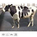 Cow Mat 4 Ft X 6 Ft X 14 Mm Overall Height X 28 Kgs (approx)