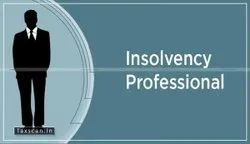 Insolvency Professional Work Services