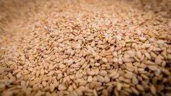 Sesame Seeds, 5% Max