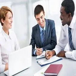 Consulting Firm Company Statutory Auditing Services, Delhi Ncr