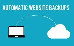 PHP/JavaScript Dynamic Automated Website Backups Services, With 24*7 Support