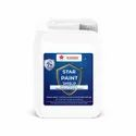 Star Paint Shield- Transparent Anti-graffiti Coating For All Painted Or Coated Surface