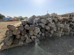 Mizoram Logs