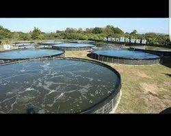 Aquaculture Fish Farming Tank