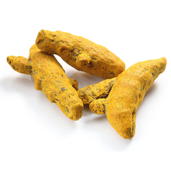 Turmeric Finger, Packaging Size: 25 Kg, Curcuma Longa