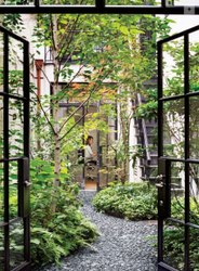 Designer Landscape Designing