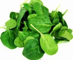 Green A Grade Fresh Spinach Leaves, PP Bag, 5 Kg