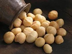 Organic Macadamia Nut, Gunny Bag, Packaging Size: 10 Kg