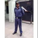 Watchman Security Guards Service Provider