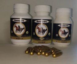 TVS Biotech Mixed Blend Of Herbal Extracts Energy Vitality Capsule, 1 X 60, Packaging Type: Bottle