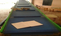 Biscuit Packing Conveyor