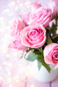 Pink Rose Flower, Packaging Size: 20 Roses In One Bundle