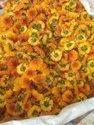 Chrysanthemums / Sevanti Seedlings