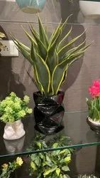 FRP Black Small Flower Pot