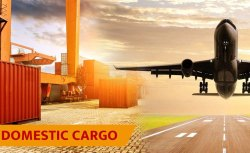 Air Cargo Service for Delhi, Is It Mobile Access: Mobile Access