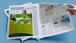 news paper ad peinting sarvice, Location: New Delhi