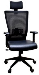 Executive High Back And Medium Back Chair - Quest Eco/Dlx