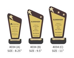 Premium Wooden Trophy with Metal Stars