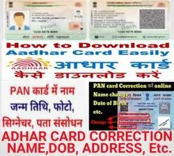 Instant Color Adhar Card Service, In Pan India, Dimension / Size: 100