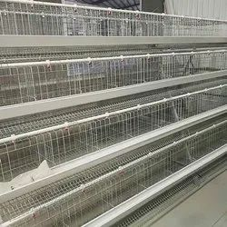 Commercial Layer Poultry Cage