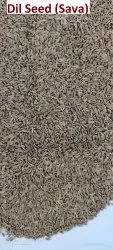 VA Brown Dill Seed, Packaging Size: 50 KG PP BAG