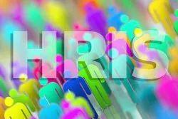 HRIS Software Development Service