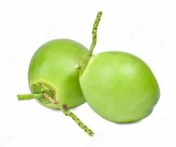 A Grade Solid Fresh Green Coconut, Packaging Size: 10 Kg, Coconut Size: Medium