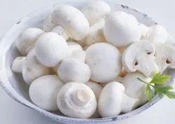Washed Button Mushroom