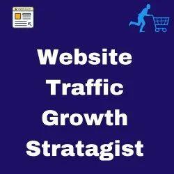 Website Traffic Growth Stratagist Service