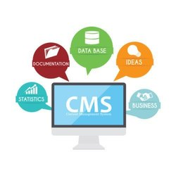 Mobile Website Java Script CMS Web Development Service