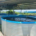 Aquaculture Consultants
